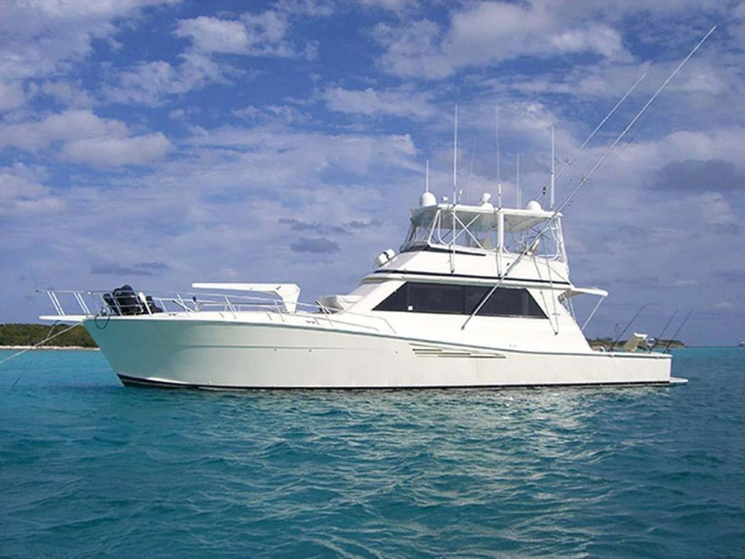 Used Viking 57 Convertible For Sale