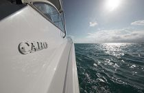 photo of Cabo Yachts logo on the 41
