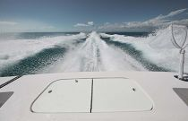 photo of Livewell in transom Cabo Yachts 41