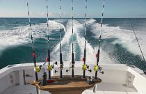 photo of Cabo 41 Express Fishing Features