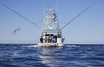 photo of Cabo 41 trolling with outriggers